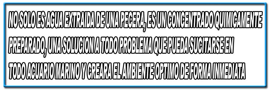 frase-2.jpg